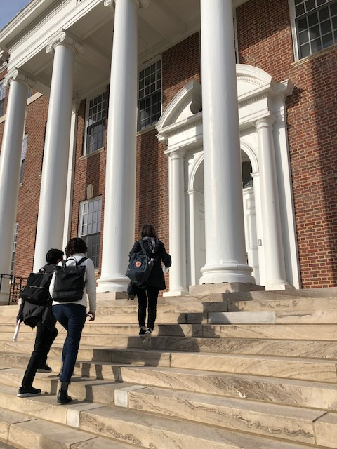 Video: What LD Students Need to Succeed in College